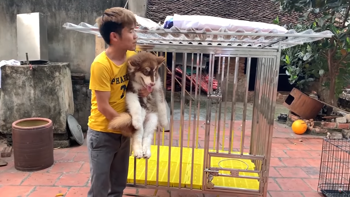 Con trai Bà Tân Vlog gây tranh cãi dữ dội khi nhốt em gái vào chuồng chó để trả thù - Ảnh 7.