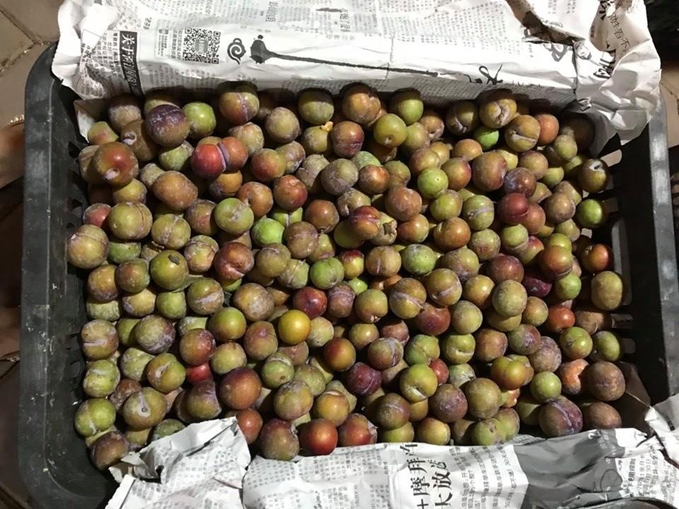 5 loại hoa quả Trung Quốc lẫn hàng Việt bày bán