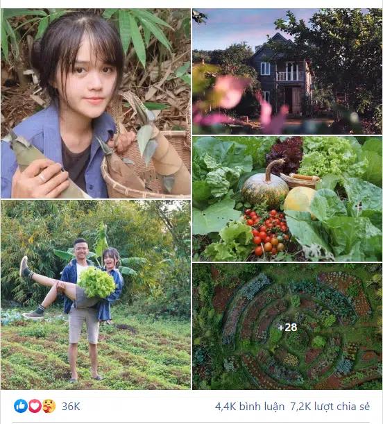 Chuyện hai vợ chồng bỏ Sài Gòn lên rừng làm vườn và sinh sống thu hút 36 nghìn like: 3 tháng sau mẹ chồng lên thăm, nhìn thấy con trai thì khóc luôn tại chỗ! - Ảnh 1.