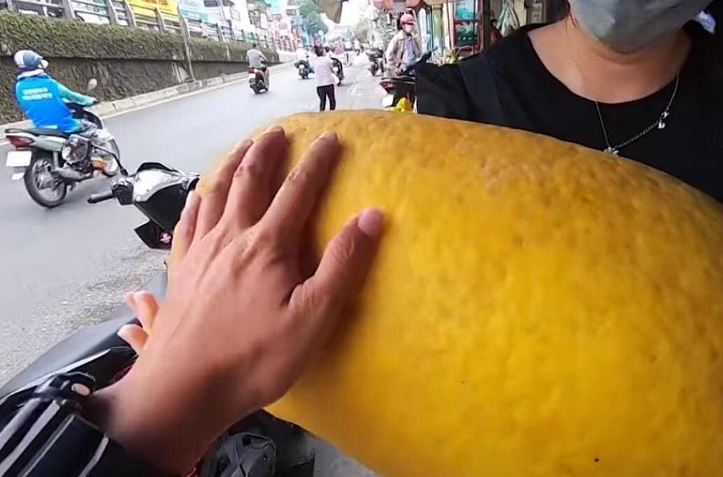 """Loại quả kỳ lạ gây sốt ở Sài Gòn với tên gọi """"trái kỳ đà"""", to gần bằng người ôm và có giá cả triệu đồng 1 quả - Ảnh 4."""