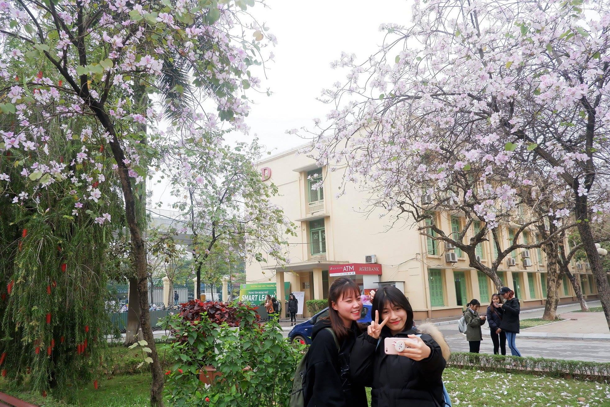 Ở Hà Nội có 1 trường đại học đẹp nhất mùa xuân, hoa ban nở rực khắp trời, nhưng sinh viên muốn ghi danh phải xác định điểm đầu vào cao ngất ngưởng - Ảnh 6.