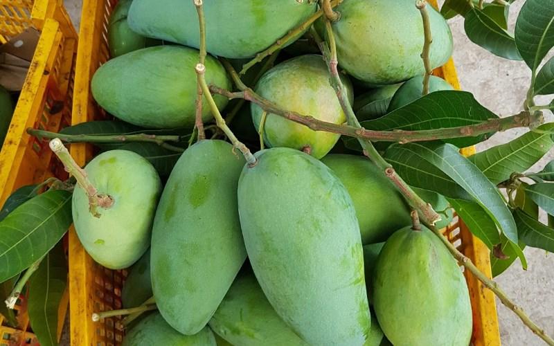 Cách chọn các loại hoa quả hè chuẩn, 10/10 quả đều ngon - Ảnh 8.