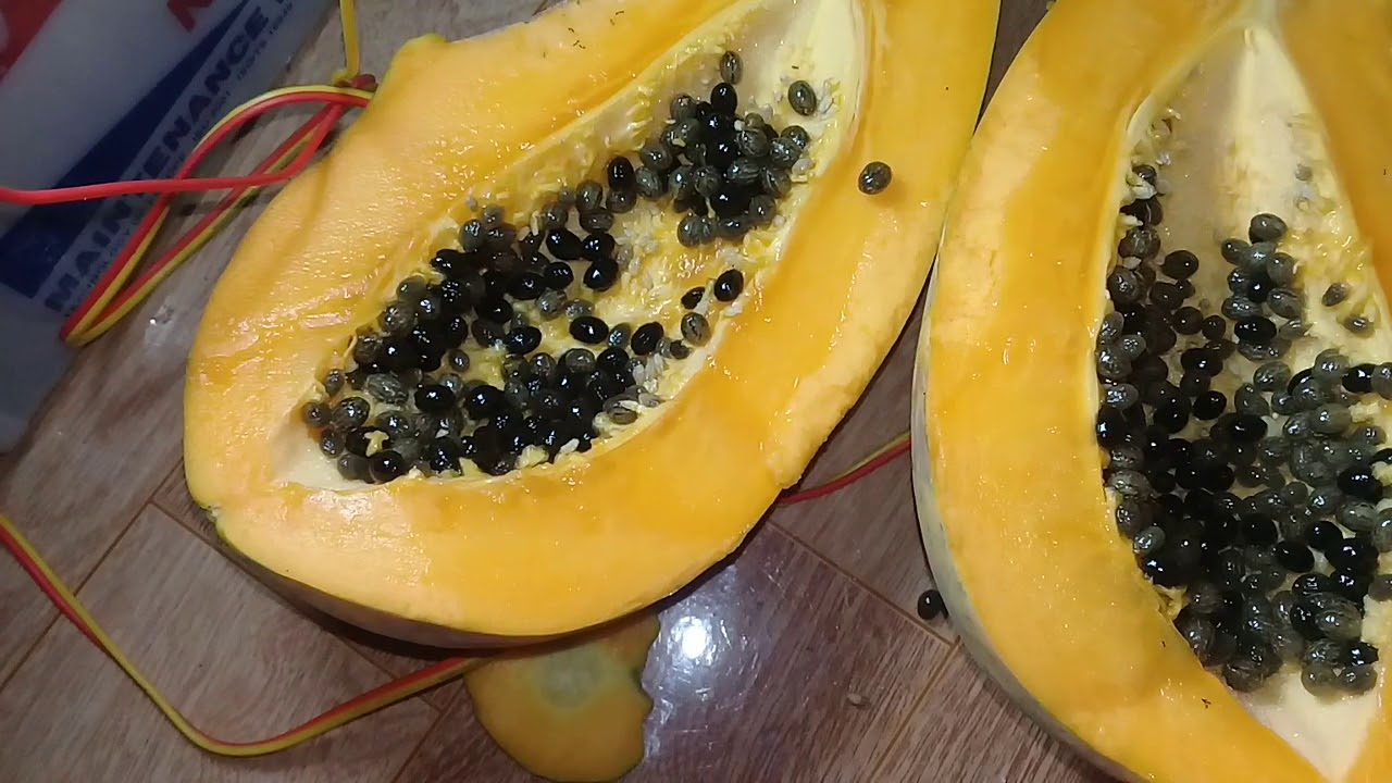 Cách chọn các loại hoa quả hè chuẩn, 10/10 quả đều ngon - Ảnh 6.