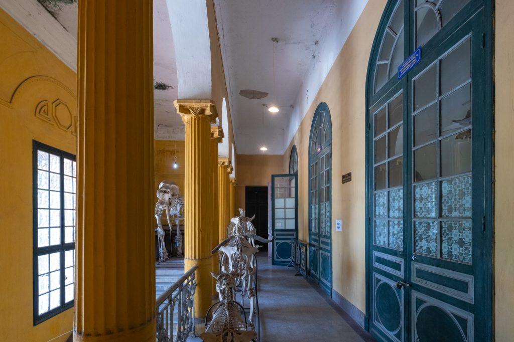 """Hà Nội có 1 trường đại học danh giá: Muốn thi đỗ phải học cực """"trâu bò"""", kiến trúc thì đẹp thôi rồi, chẳng khác nào lâu đài cổ - Ảnh 9."""