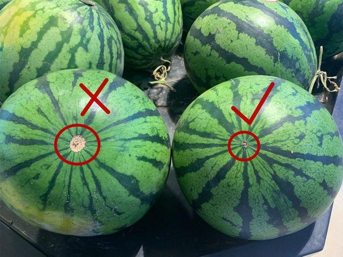 Mẹo chọn dưa hấu vỏ mỏng, ruột đỏ ngon từ những dấu hiệu đơn giản không phải ai cũng biết - Ảnh 2.