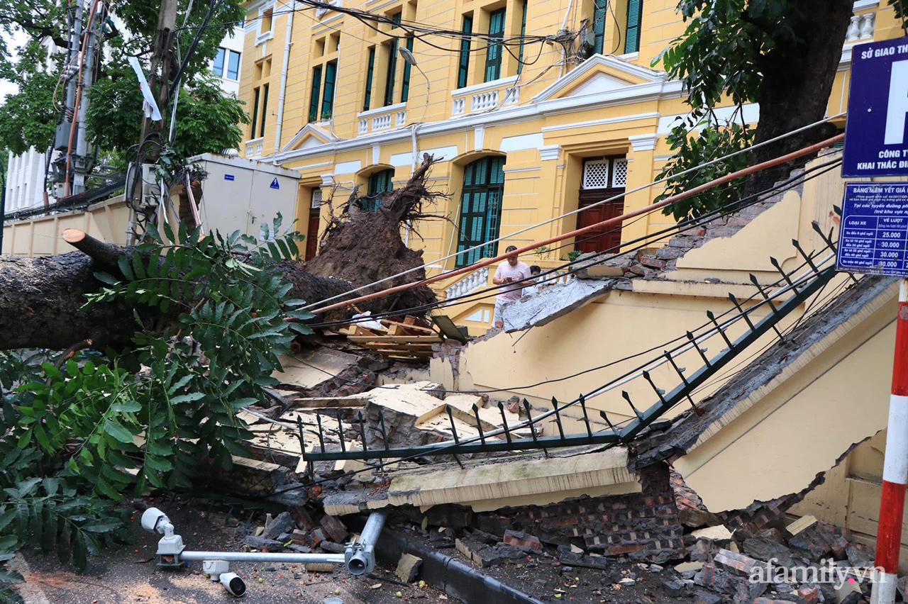 Hà Nội: Cây cổ thụ hàng chục năm tuổi bất ngờ bật gốc, đè sập tường Tòa án nhân dân tối cao sau trận gió lớn - Ảnh 1.