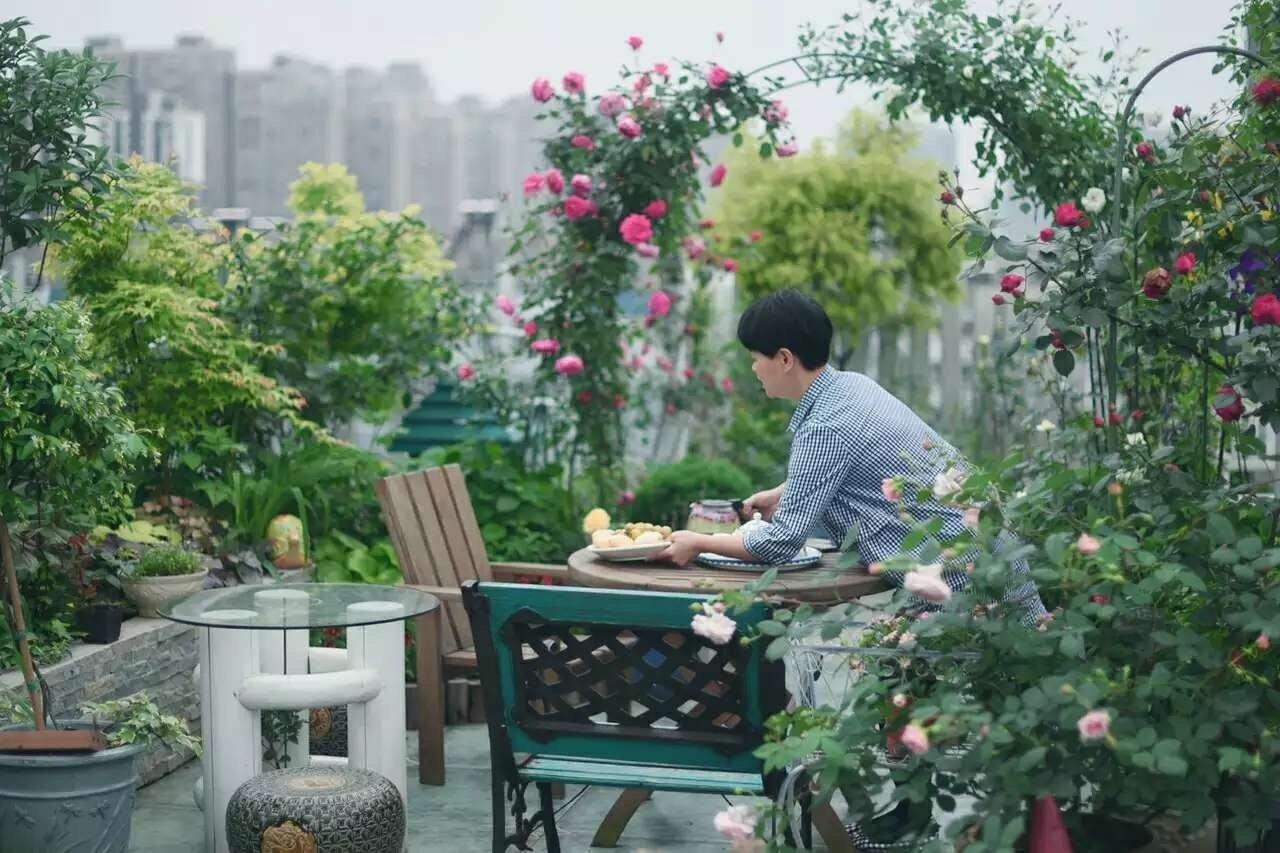 Tận dụng mái nhà bỏ hoang, người phụ nữ yêu hoa biến không gian thành khu vườn dịu dàng sắc hoa - Ảnh 14.