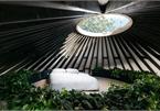 Ngôi nhà như một ốc đảo nhỏ xanh tươi trong lành của cặp vợ chồng dành 1 năm để thiết kế và xây dựng