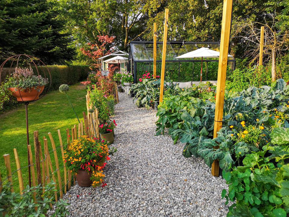 Khu vườn đẹp như cổ tích nhờ sở thích trồng cây và hoa của chàng trai trẻ - Ảnh 22.
