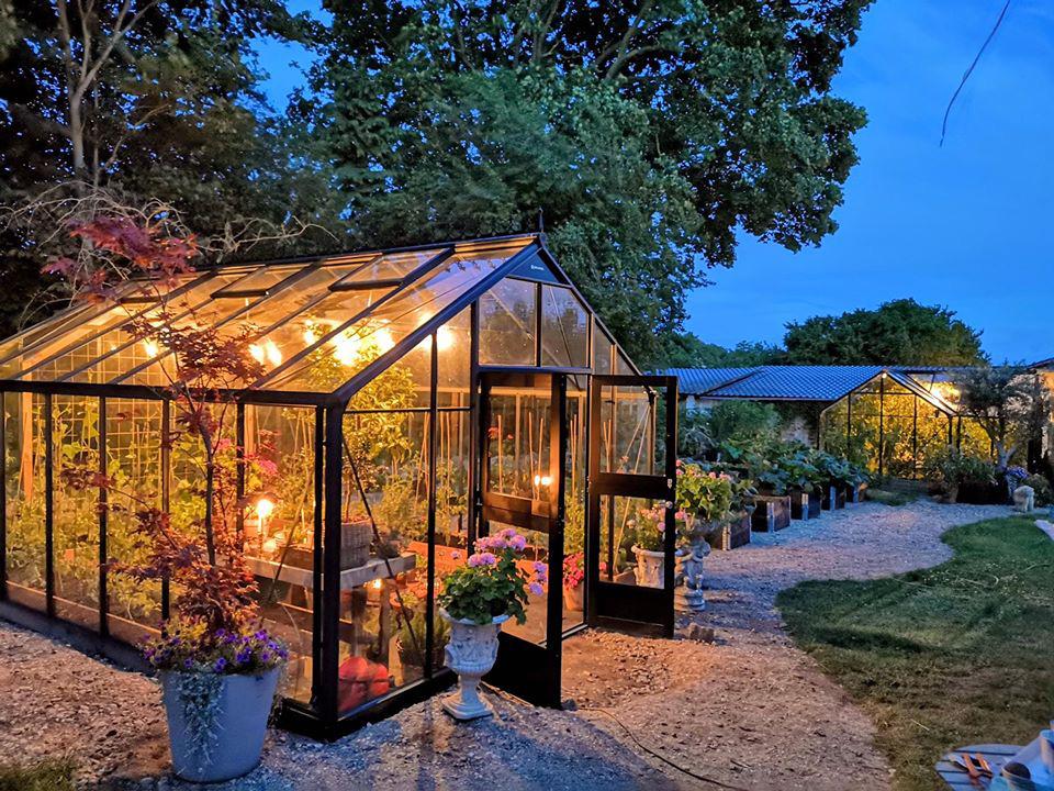 Khu vườn đẹp như cổ tích nhờ sở thích trồng cây và hoa của chàng trai trẻ - Ảnh 17.