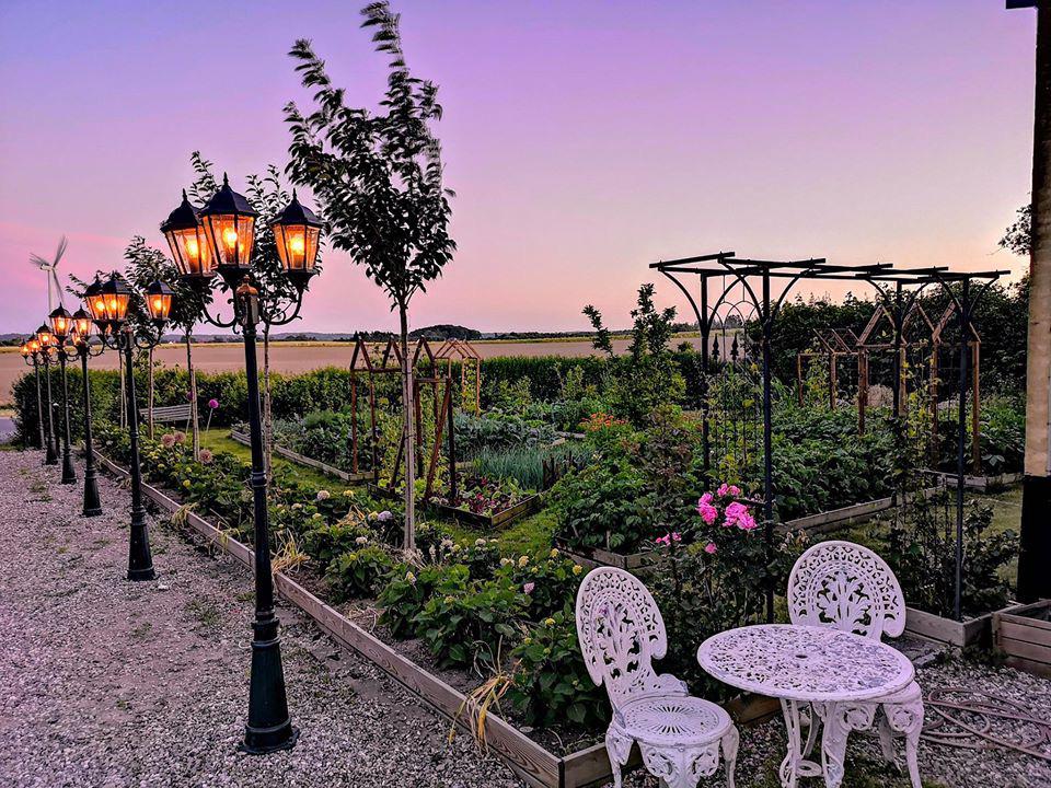 Khu vườn đẹp như cổ tích nhờ sở thích trồng cây và hoa của chàng trai trẻ - Ảnh 16.