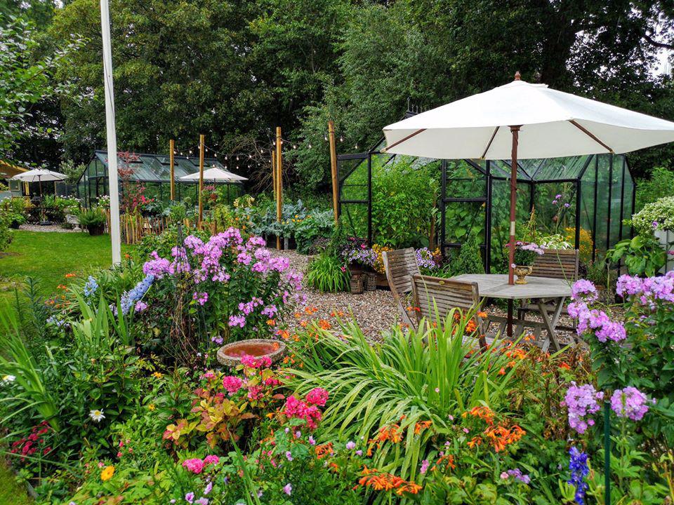 Khu vườn đẹp như cổ tích nhờ sở thích trồng cây và hoa của chàng trai trẻ - Ảnh 6.