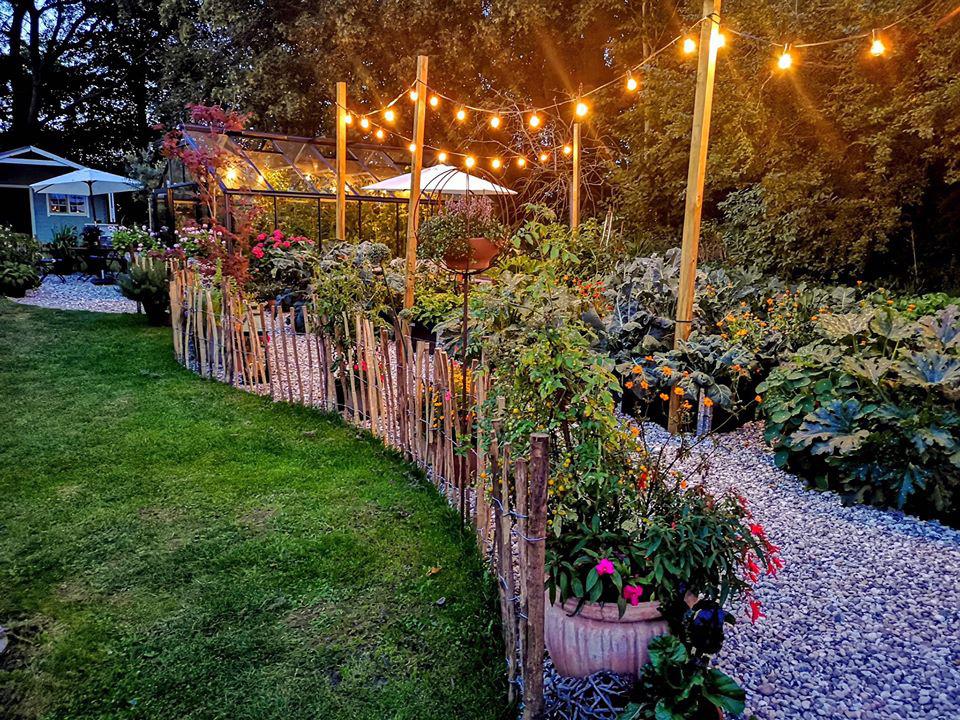 Khu vườn đẹp như cổ tích nhờ sở thích trồng cây và hoa của chàng trai trẻ - Ảnh 4.
