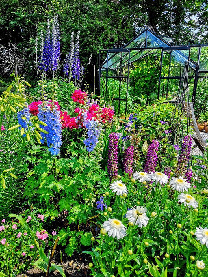 Khu vườn đẹp như cổ tích nhờ sở thích trồng cây và hoa của chàng trai trẻ - Ảnh 9.