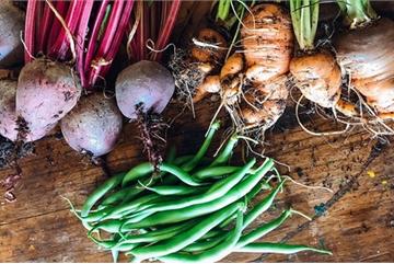Gia đình 7 người trồng rau quả, nuôi gà sạch, sống yên bình ở ngoại ô