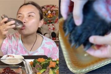 YouTuber Quỳnh Trần JP công khai làm clip ăn chân gấu, phụ huynh la ó vì nội dung độc hại cho trẻ em!