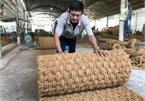 Vỏ dừa xấu xí bỏ đi, người dân Bến Tre lại thu cả trăm tỉ đồng