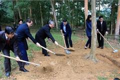 Thường trực Ban Bí thư dự lễ phát động Tết trồng cây