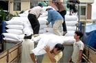 Hỗ trợ gần 4.900 tấn gạo cho 6 tỉnh trong dịp Tết