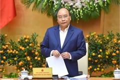 Thủ tướng yêu cầu 'chống dịch tả lợn châu Phi như chống giặc'