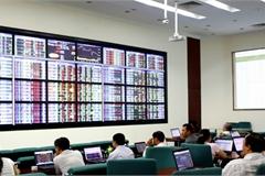 Hướng dẫn giám sát giao dịch chứng khoán trên thị trường chứng khoán