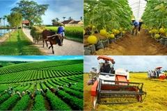 Hội Nông dân tiếp tục thực hiện một số chương trình, đề án phát triển KT-XH nông thôn