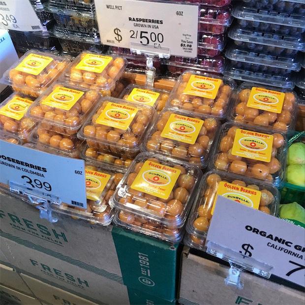 """Những loại cây quả mọc dại ở Việt Nam """"bán không ai mua"""" nhưng sang nước ngoài lại có giá cực đắt, còn được săn lùng đến """"cháy hàng"""" - Ảnh 2."""