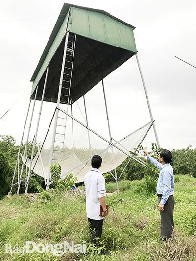 Chòi nuôi dơi nhà ông Nguyễn Văn Sáu (ngụ xã Phú Lý, H.Vĩnh Cửu). Ảnh: Phương Liễu
