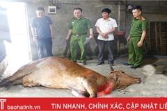 Ngăn chặn dịch bệnh lây lan từ việc mua bán, vận chuyển, giết mổ gia súc đảm bảo an toàn, vệ sinh