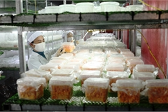 Cảnh báo về sản phẩm đông trùng hạ thảo không rõ nguồn gốc