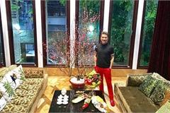 Phủ nhận rao biệt thự, Đàm Vĩnh Hưng sở hữu bất động sản 'khủng' nào?