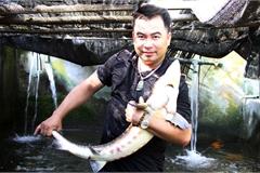 Bốn anh em rủ nhau nuôi cá tầm dưới chân núi Voi Đầm, mỗi năm thu lãi gần nửa tỷ đồng