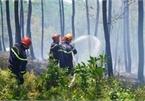 7 vụ cháy rừng xảy ra trong một ngày ở Thừa Thiên Huế