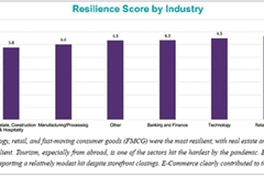 State firms more resilient than foreign, Vietnamese private companies: survey