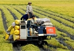 Challenges compel restructuring in agriculture