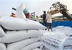 Trade Ministry proposes exporting 400,000 tonnes of rice in April
