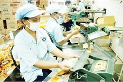 Vietnamese SMEs struggle to access credit support package