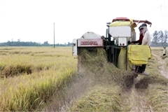 Experts examine scenarios for Vietnam's economic growth during COVID-19 outbreak