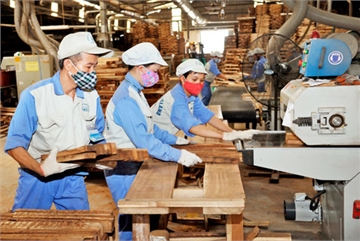 Vietnamese wood processing and export firms need to adapt during pandemic