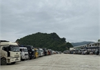Lang Son proposes temporary halt to goods transport at Tan Thanh border gate