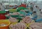 VN Trade Ministry sets up working groups for EVFTA