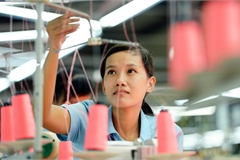 Vietnam should enhance its productivity to grow: WB