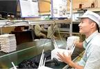 FDI into electronics should promote local companies