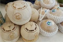 Patents in Vietnam increase 56 percent