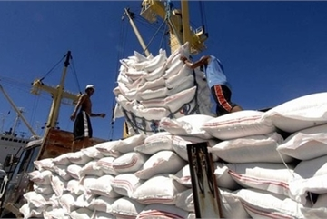 Vietnam to increase rice exports to EU under EVFTA