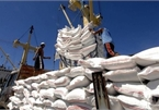 Vietnam to increase rice exports to EU under EVFTA