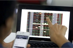Most investment funds in VN suffer losses in the first half