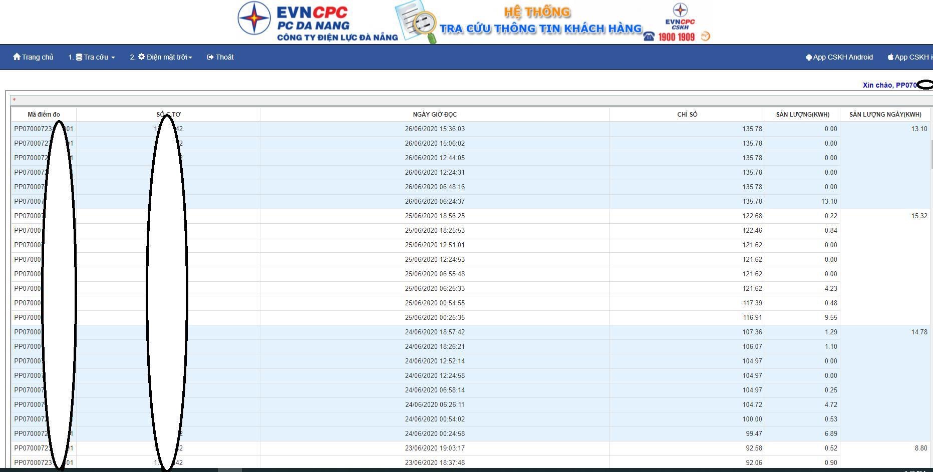 Điện lực Đà Nẵng phát triển hệ thống tra cứu chỉ số điện theo ngày, khách hàng có thể tự theo dõi, kiểm tra tiền điện của mình - Ảnh 1.