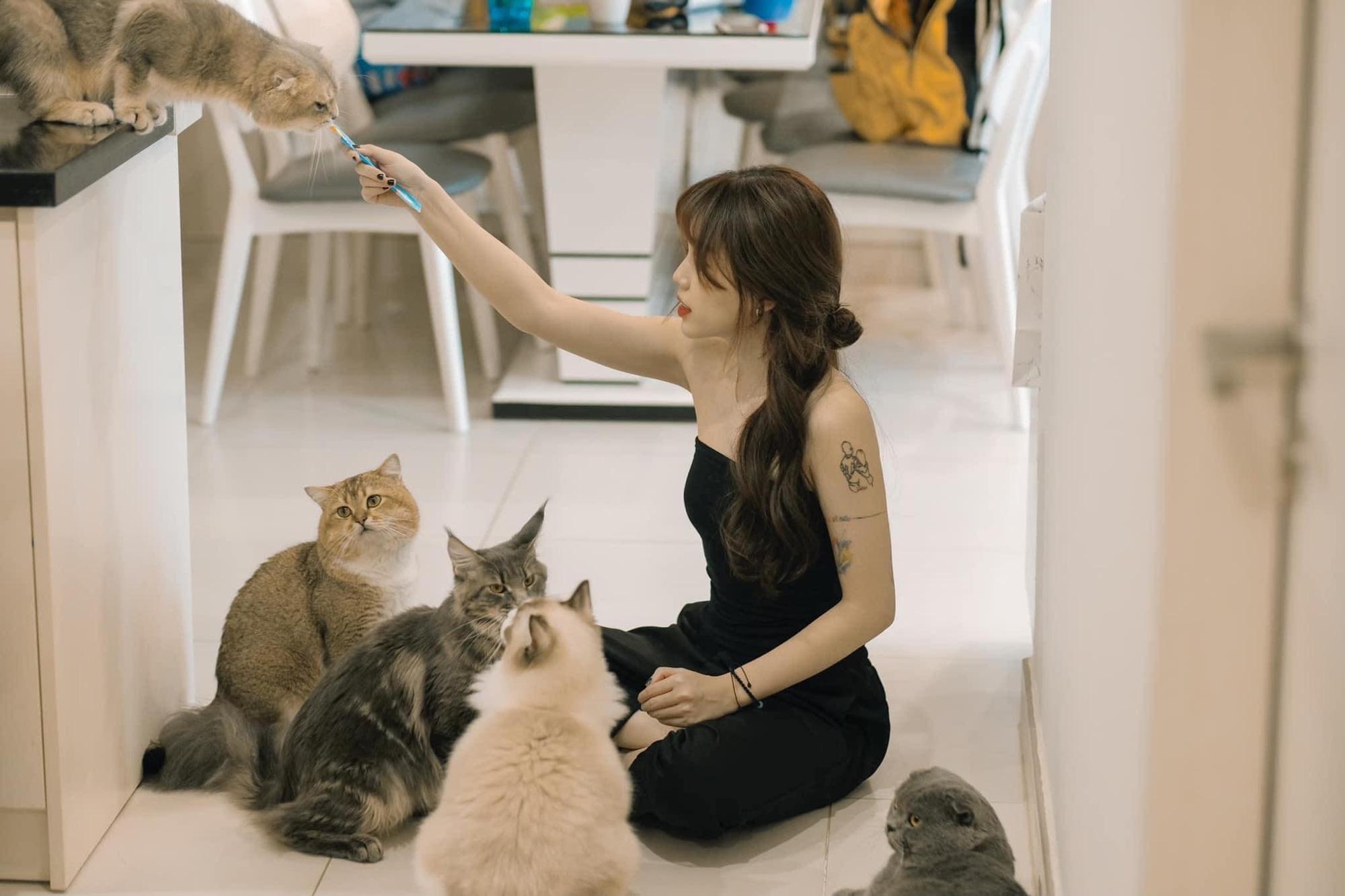 Streamer giàu có sở thích đốt tiền: Độ Mixi chơi mô hình tiền tỷ, Linh Ngọc Đàm nuôi mèo hàng trăm triệu đồng - Ảnh 8.
