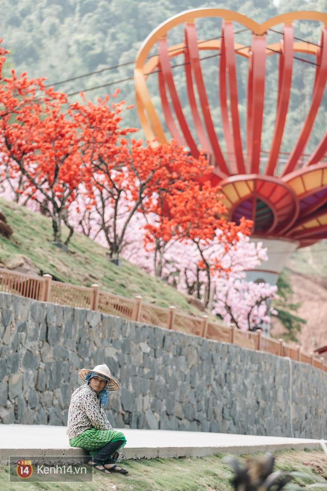 Tranh cãi xoay quanh yếu tố thẩm mỹ của cây cầu 5D đang gây sốt ở Mộc Châu: Khen đẹp thì ít nhưng chê bai sến súa, lạc lõng nhiều vô kể - Ảnh 25.